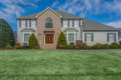 Parsippany-Troy Hills Twp. Single Family Home For Sale: 386 E Halsey Rd
