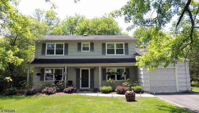 Mount Olive Twp. Single Family Home For Sale: 51 Biscay Dr