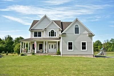 Kingwood Twp. Single Family Home For Sale: 74 Lower Oak Grove Road