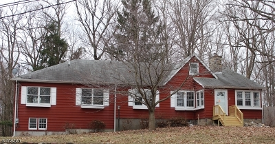 Denville Twp. Single Family Home For Sale: 353 Franklin Ave
