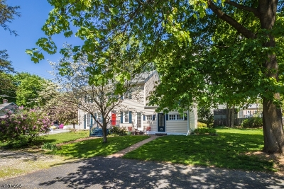 Clinton Twp. Single Family Home For Sale: 46 West St