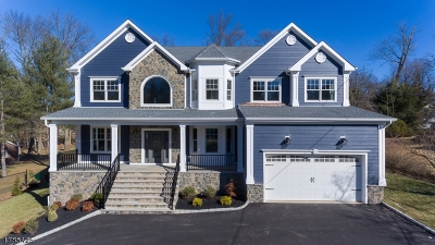 Berkeley Heights Single Family Home For Sale: 682 Plainfield Ave