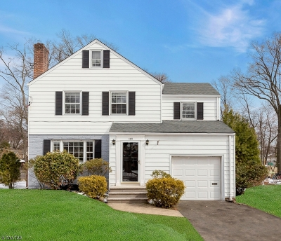Westfield Town NJ Single Family Home For Sale: $675,000