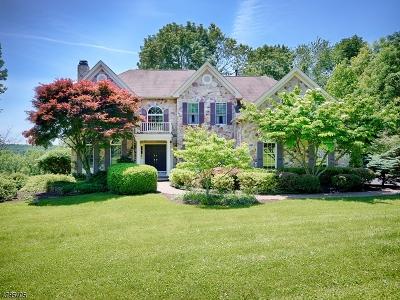 Bethlehem Twp. Single Family Home For Sale: 24 Old Schoolhouse Rd