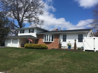 Roxbury Twp. Single Family Home For Sale: 1 William Court