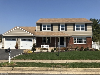 Edison Twp. Single Family Home For Sale: 10 Visco Dr