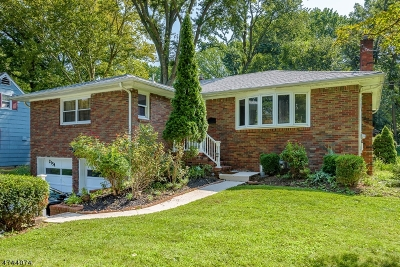 Scotch Plains Twp. Single Family Home For Sale: 2154 Raritan Rd