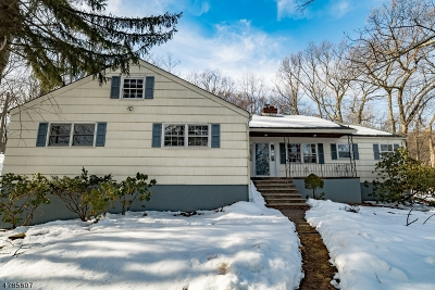 Morristown Town, Morris Twp. Single Family Home For Sale: 53 Junard Dr