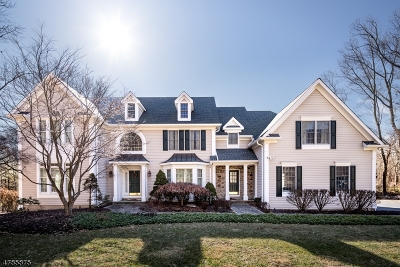 Bernards Twp., Bernardsville Boro Single Family Home For Sale: 265 Mount Prospect Rd