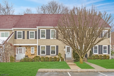 Mendham Boro Condo/Townhouse For Sale: 30 Galway Dr