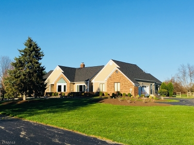 Branchburg Twp. Single Family Home For Sale: 83 Briar Way
