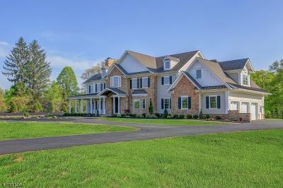 Bernards Twp., Bernardsville Boro Single Family Home For Sale: 224 Mountain Rd