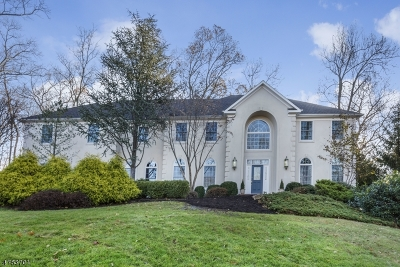 Bernards Twp., Bernardsville Boro Single Family Home For Sale: 25 Laurelwood Dr