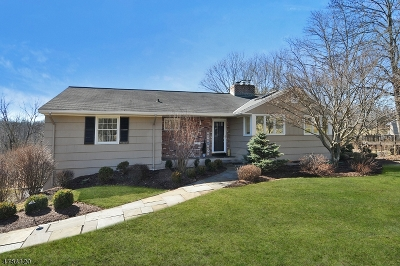 Bernards Twp., Bernardsville Boro Single Family Home For Sale: 36 Pheasant Hill Dr