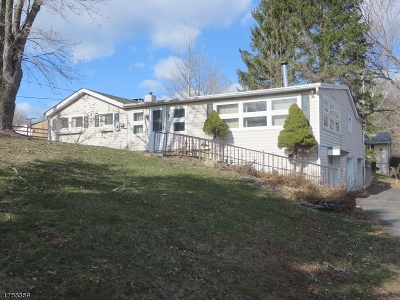Holland Twp., Milford Boro Single Family Home For Sale: 138 Preston Rd