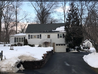 Sparta Twp. Single Family Home For Sale: 53 Edison Rd