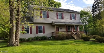 Mount Olive Twp. Single Family Home For Sale: 48 Madison Ave