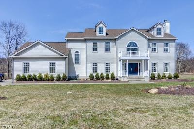 Tewksbury Twp. Single Family Home For Sale: 39 Fairmount Rd W