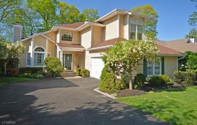 Bedminster Twp. Single Family Home For Sale: 65 Autumn Ridge Rd