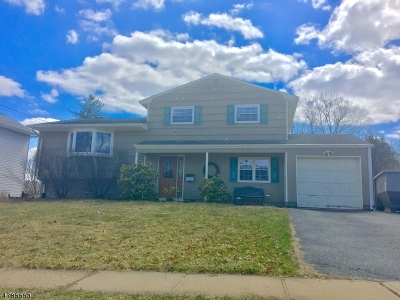 Roxbury Twp. Single Family Home For Sale: 2 Judy Rd