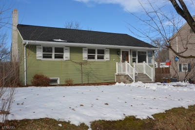 Rockaway Twp. Single Family Home For Sale: 423 Mount Hope Rd