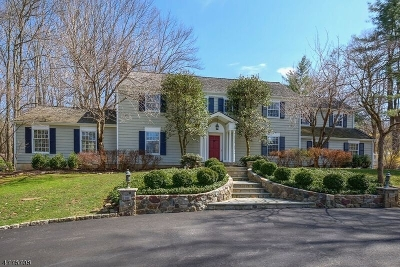 Bernards Twp., Bernardsville Boro Single Family Home For Sale: 33 Lloyd Rd