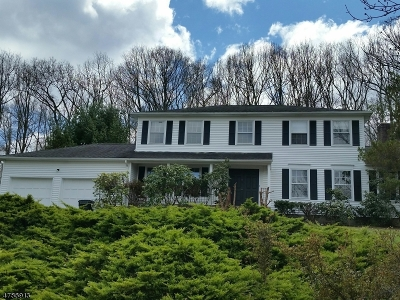 Mount Olive Twp. Single Family Home For Sale: 18 Lisa Dr