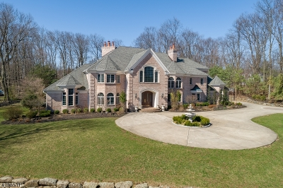 Mendham Twp. NJ Single Family Home For Sale: $1,850,000