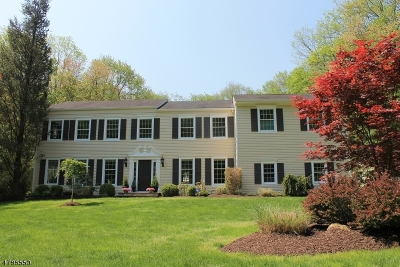Mendham Boro Single Family Home For Sale: 38 Dean Rd