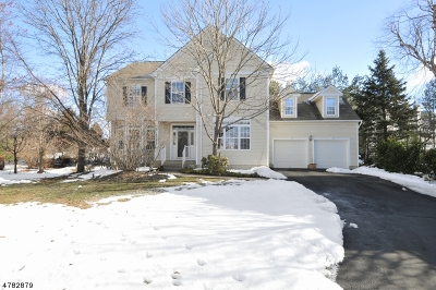 Bernards Twp., Bernardsville Boro Single Family Home For Sale: 35 Hansom Rd