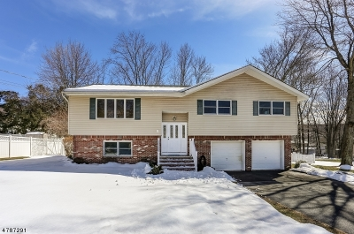 Roxbury Twp. Single Family Home For Sale: 3 Jill Ter
