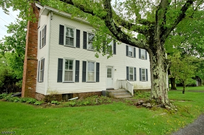 Montgomery Twp. Single Family Home For Sale: 838 Route 601