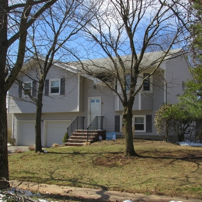Piscataway Twp. Single Family Home For Sale: 8 Suttie Ave
