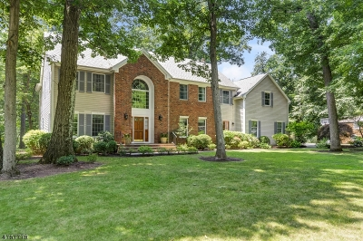Morris Twp., Morristown Town Single Family Home For Sale: 3 Croydon Dr