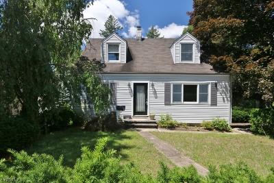 Wayne Twp. Single Family Home For Sale: 1071 Alps Rd