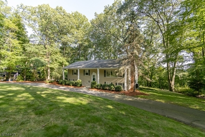 Morris Twp. Single Family Home For Sale: 36 N Star Dr