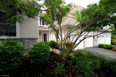 Bernards Twp. Condo/Townhouse For Sale: 27 Amherst Dr