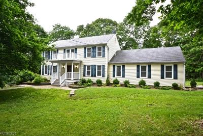 Alexandria Twp. Single Family Home For Sale: 2 Hickory Corner Rd
