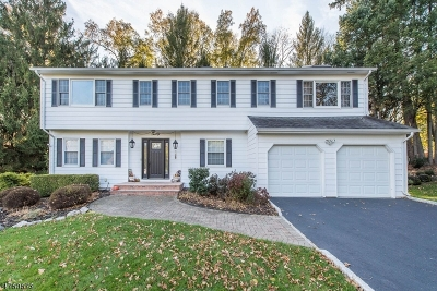East Hanover Twp. NJ Single Family Home For Sale: $724,900