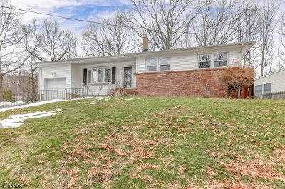 Rockaway Twp. Single Family Home For Sale: 39 Dacotah Ave