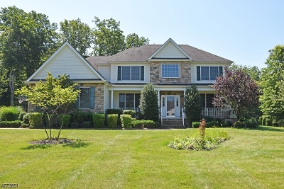 Roxbury Twp. Single Family Home For Sale: 37 Reger Rd