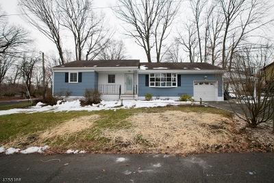 Scotch Plains Twp. Single Family Home For Sale: 1140 Roosevelt Ave
