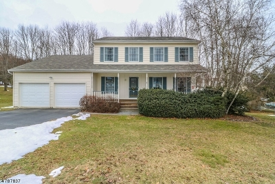 Sussex County Single Family Home For Sale: 25 Douma Dr