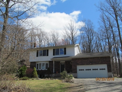 Warren County Single Family Home For Sale: 165 Quenby Mountain Rd