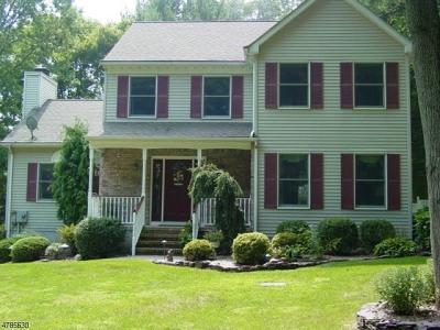 Delaware Twp. Single Family Home For Sale: 380 Sergeantsville Rd