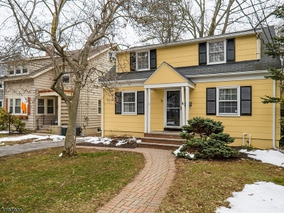 Morris County Single Family Home For Sale: 70 Center Ave