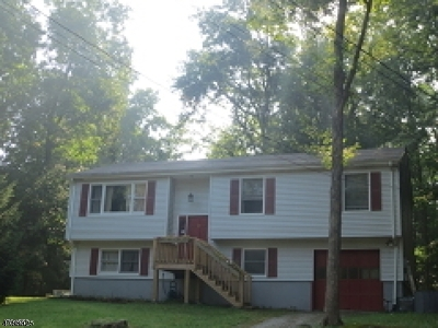 Sussex County Single Family Home For Sale: 10 Evergreen Rd