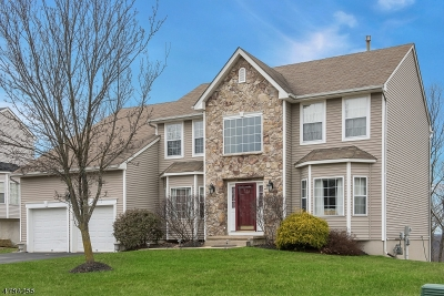 Morris County Single Family Home For Sale: 178 Fox Hill Court