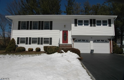 Morris County Single Family Home For Sale: 21 Brewster Pl