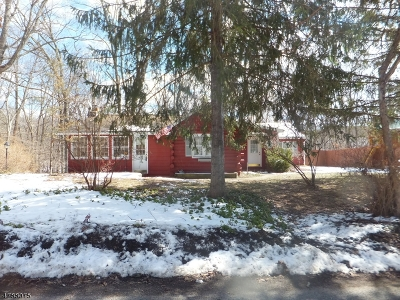 Sussex County Single Family Home For Sale: 920 Edgewood Dr